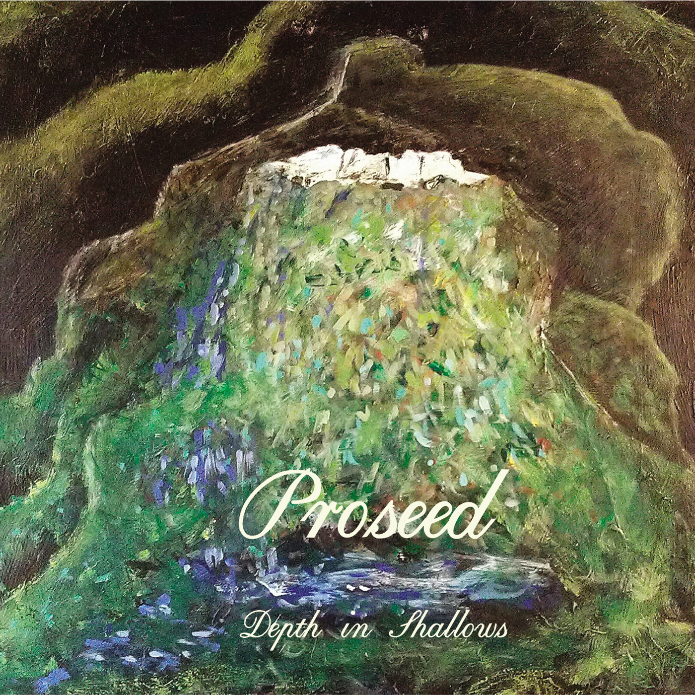 Depth in Shallows (CD) - Proseed